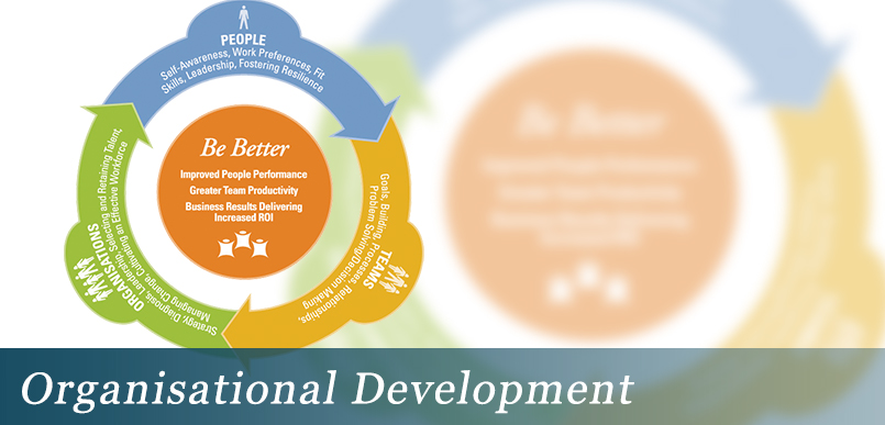 Organisational Development Consultants